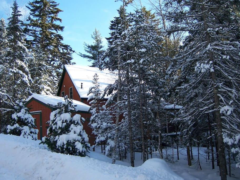 Another beautiful sunny snowy day in Acadia National Park.