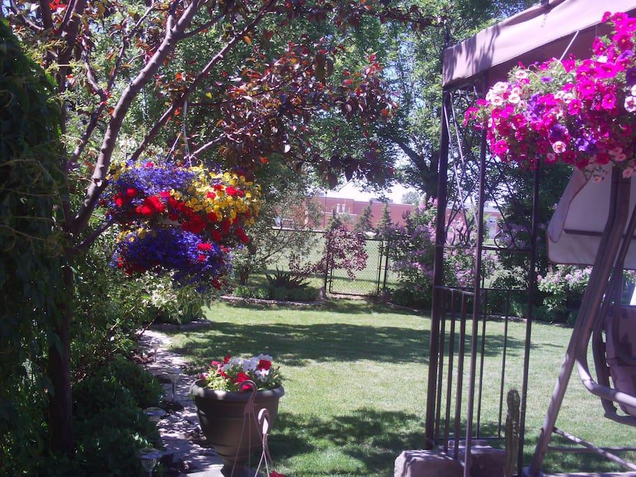 Beautiful backyard with patio