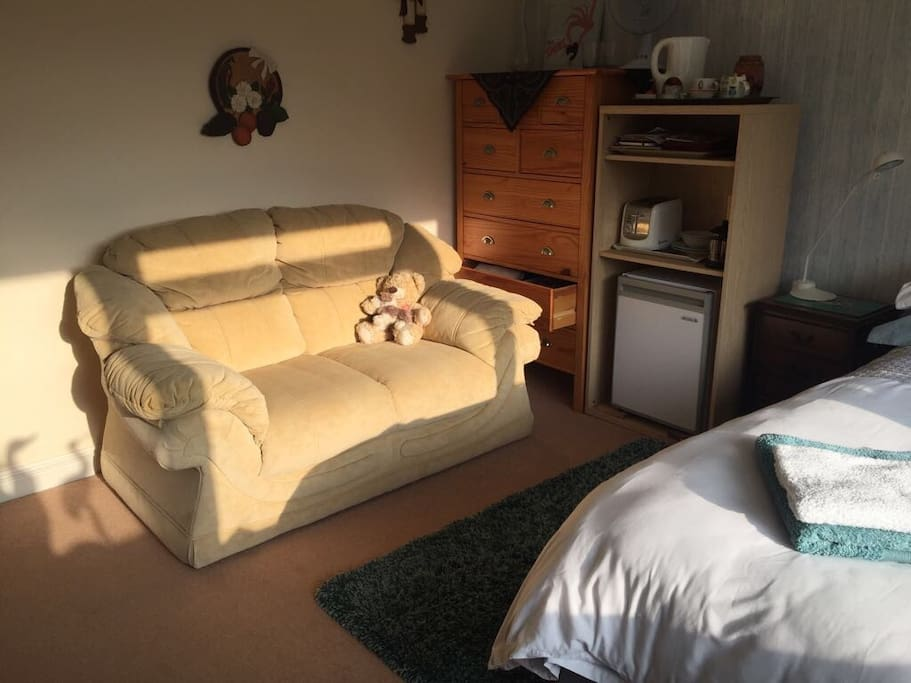 Comfortable 2 seater sofa.