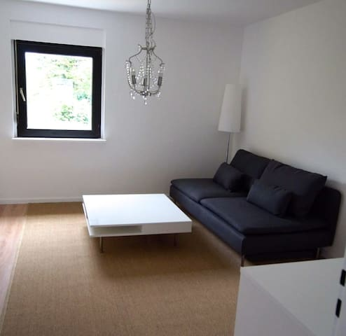 Spacious, newly renovated 2 Br apt.- Wü-Frauenland - Würzburg - Apartament