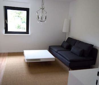 Spacious, newly renovated 2 Br apt.- Wü-Frauenland - Würzburg - Appartement