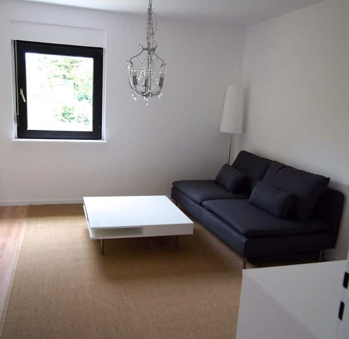 Spacious, newly renovated 2 Br apt.- Wü-Frauenland