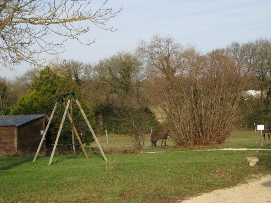 balançoire pour les enfants près de nos animaux (ânes,chèvres)
