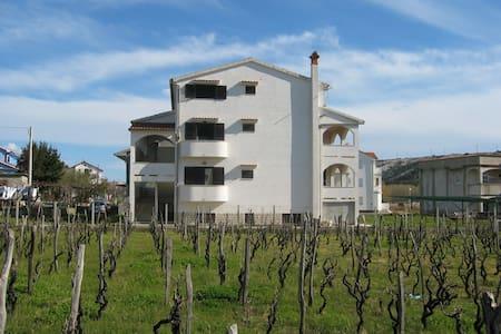 Apartment on Adriatic Island Rab 2 - Lopar