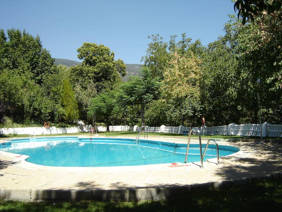 Communal swimming pool. June to September.