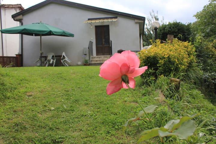 Casa Vacanze Da Fabio - Molazzana - Huoneisto