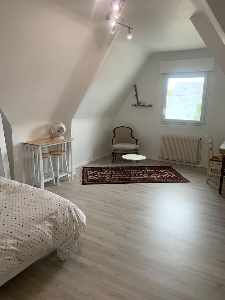 Chambre Privée 25m2, lit double, fac Médecine/CHU