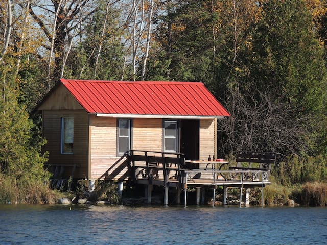 Waterfront Cabin on private trout Lake