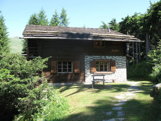 Lisiere****Huge Ski-In 6 Bed Chalet - Bagnes - Haus
