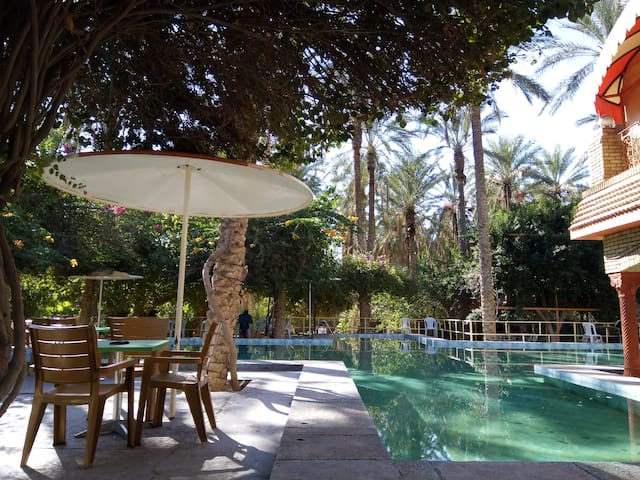 Logement a l'oasis de Tozeur-Tunisie