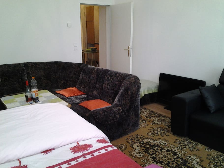Entire High A Class Apartment-Room with Double Bed and Sleeping Couch Privately for the Guest only.