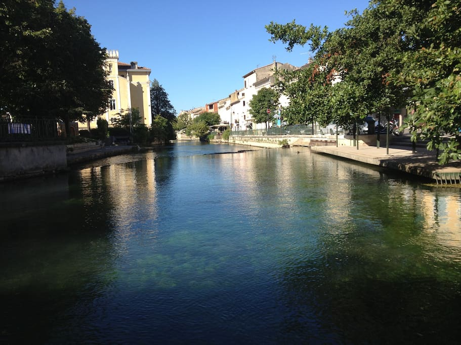 Your local town, just along the road: L'Isle sur la Sorgue. It's all medieval streets and homes, atmospheric cafes, market days and of course the river.