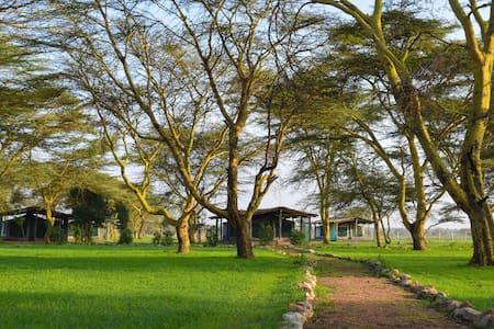 Ilariak Eco Lodge