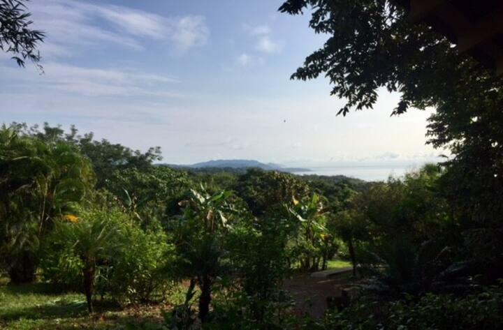 Agua Vista Bamboo Bungalow