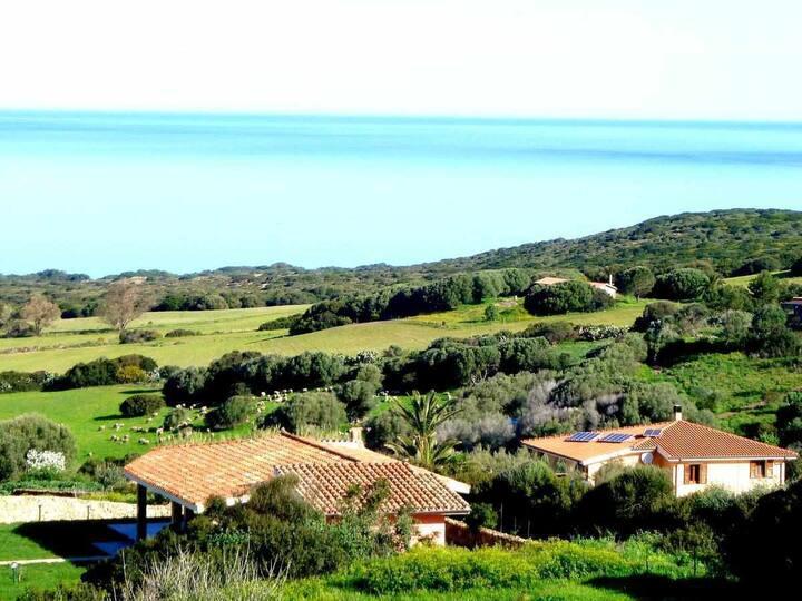 Holidaz house Oasi di Scivu with sea-views