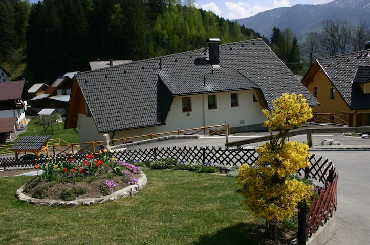 Large apartment with beautiful views - Rateče-Planica - Apartemen