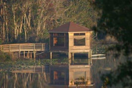 Orlando's Majestic View - Altamonte Springs