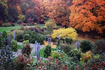 Fall at the Arnold Arboretum