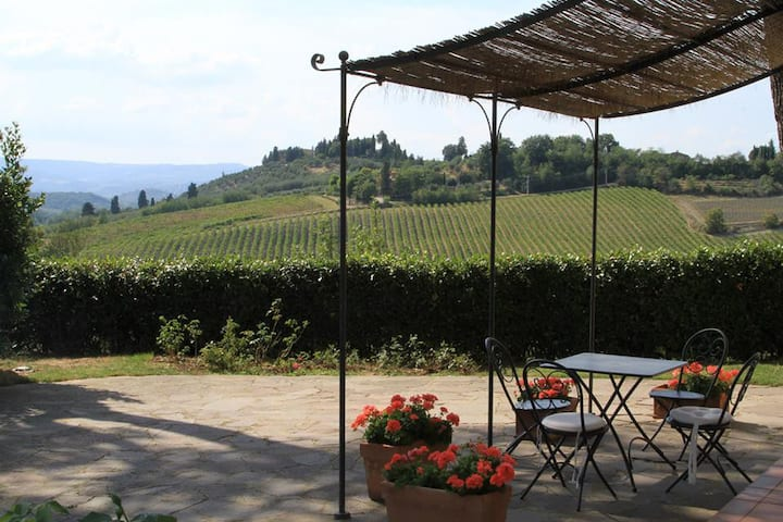 Relax on top of Tuscan hill with view on vineyards