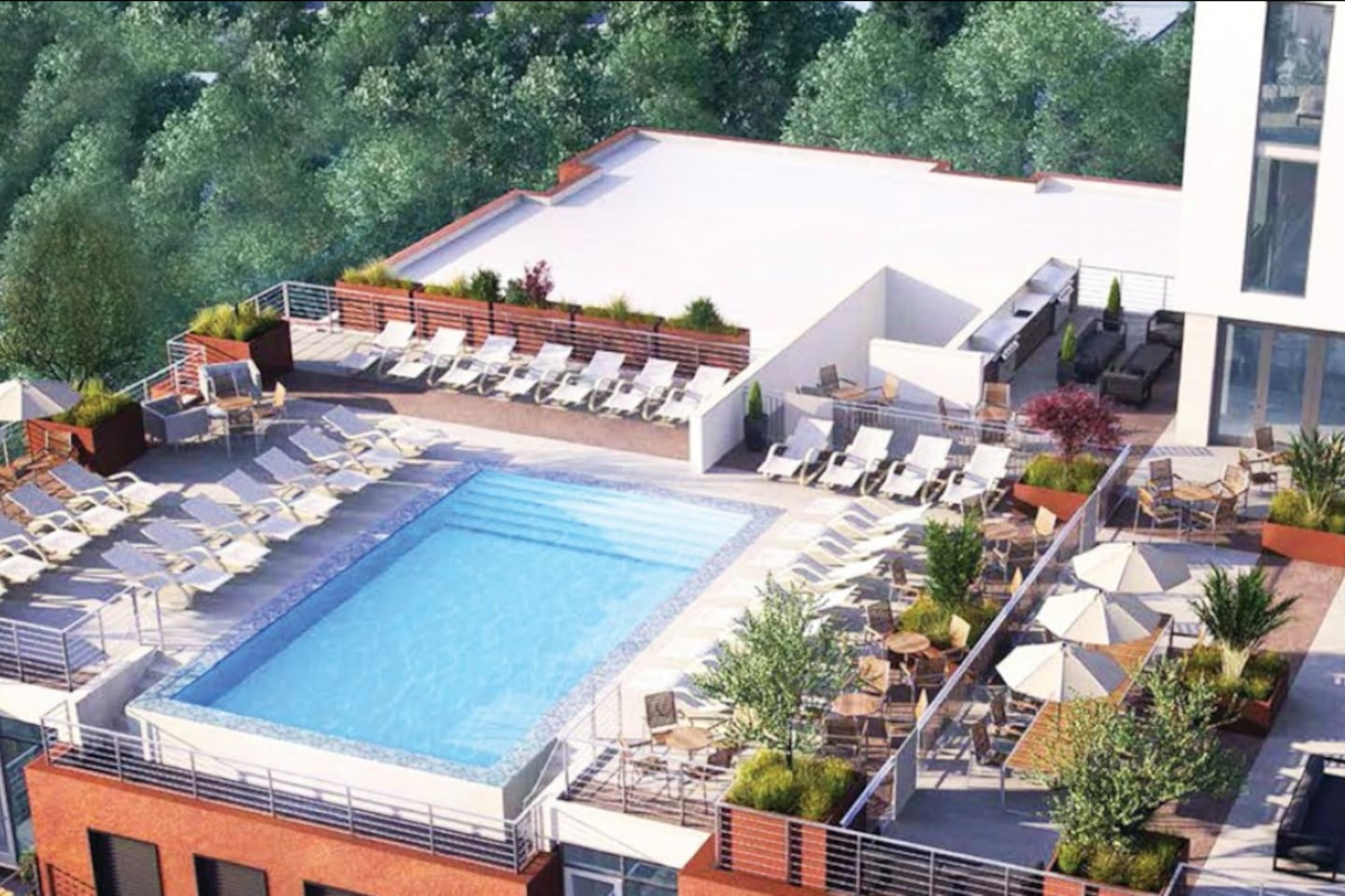 Rooftop pool and guest areas