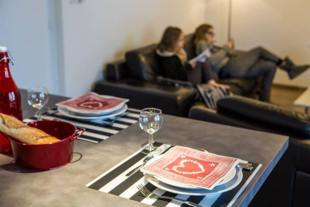 pièce à vivre,cuisine ouverte toute équipée, salon TV wifi