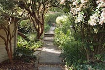 Romantic path to a magical place-Pitts Keep
