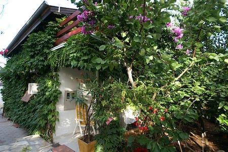 Jungle house red apartment 2+2 - Petrčane