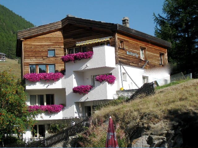 Butterfly: pure nature & clean air - Saas Fee - Appartement
