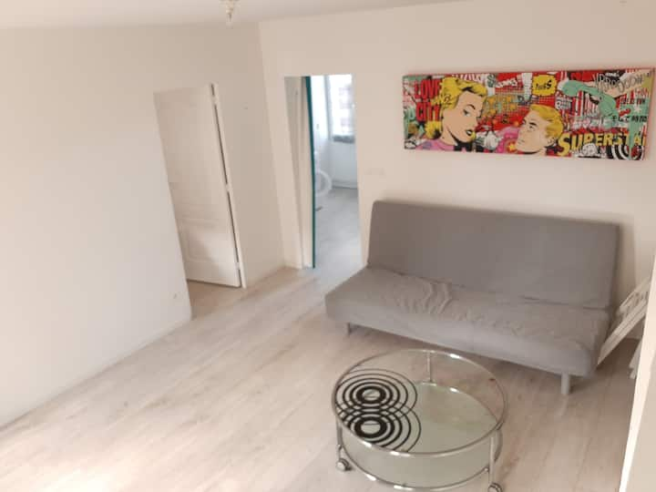 Appartement 50 m² centre ville