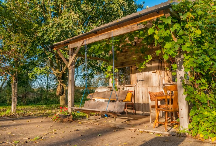 You can see why we call this the Vine Cabin. In Autumn the bunches of grapes hang down all round the door