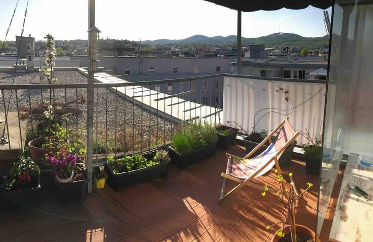 Cosy 2-Room Apartment with big sunny Terrace!