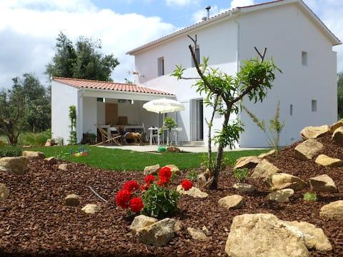 Casa do Olival - Figueiró dos Vinhos
