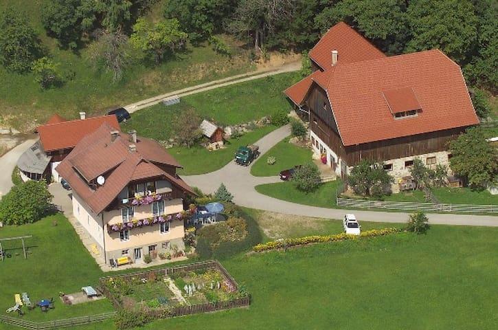 Oberrainerhof/Apartment Karawanken - Dreihofen - Apartamento