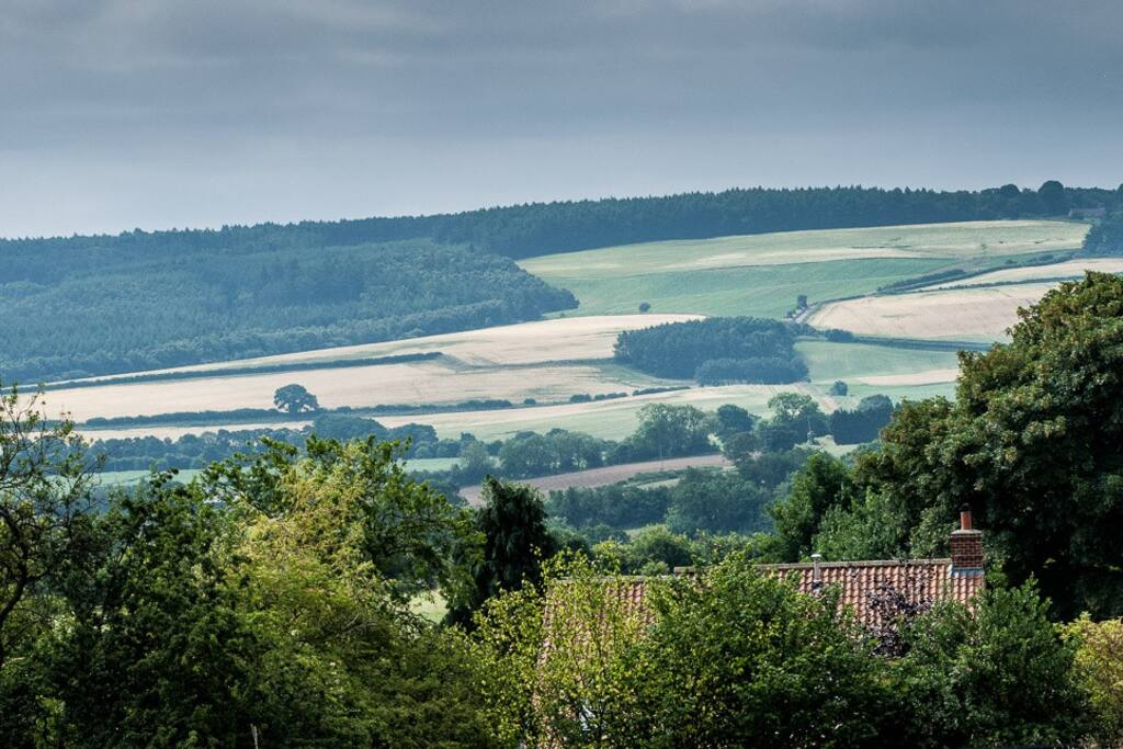 The annexe is on the side of a hill and these are the views. Stunning!