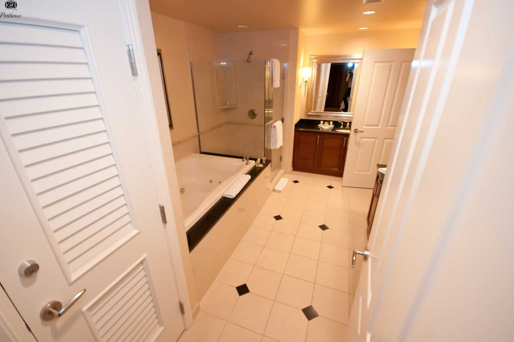 The master bathroom (a jacuzzi and stall shower) and private door to the toilet