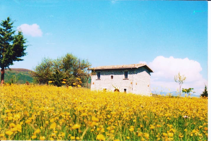 Country House in the national park - Forlì del Sannio - 別荘