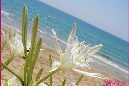 Vacanze in Villa a 2 passi dal Mare - Le Cannella - Дом