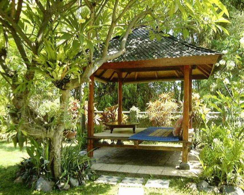 garden pavilion - for relaxing, having a massage, reading, watching animals...........