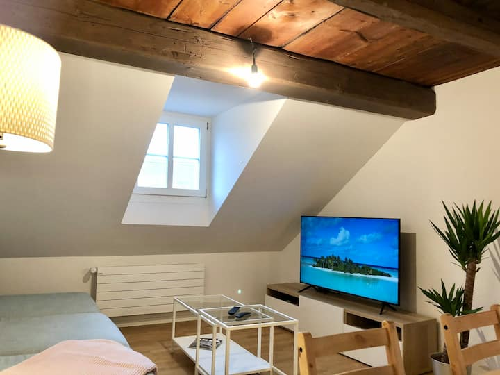 Quiet Attic-Apt., Old Town, 1min to Zytglogge