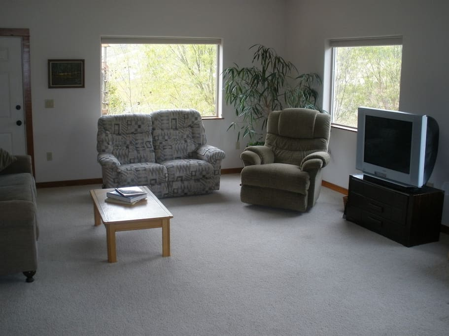 Large family room with natural lighting and beautiful views.