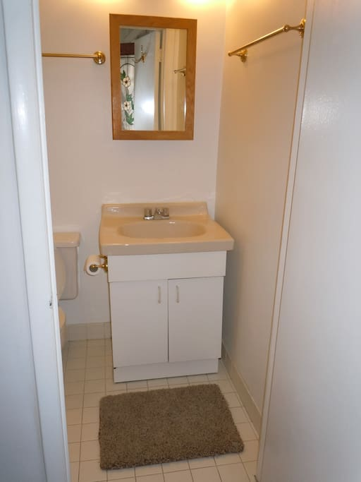 There is an efficient bathroom with shower (in a very small bathtub base) on the bedroom level near the backdoor.