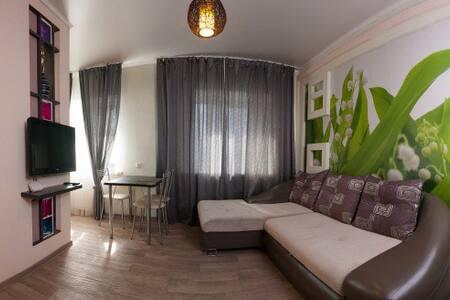 Двухкомнатная прекрасная квартира на Ленина 29 - Krasnoyarsk