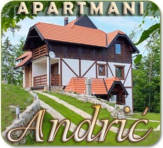 Apartments Andric on mountain Tara  - Rača - Dom