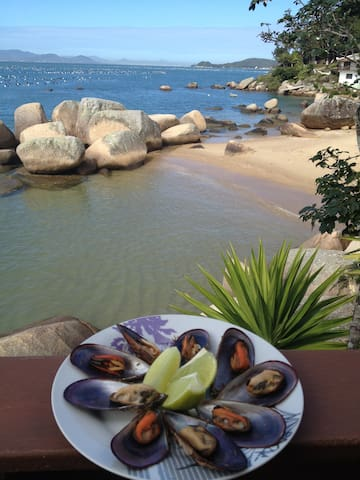 Some mussels we can go and take for you immediately in front of the beach