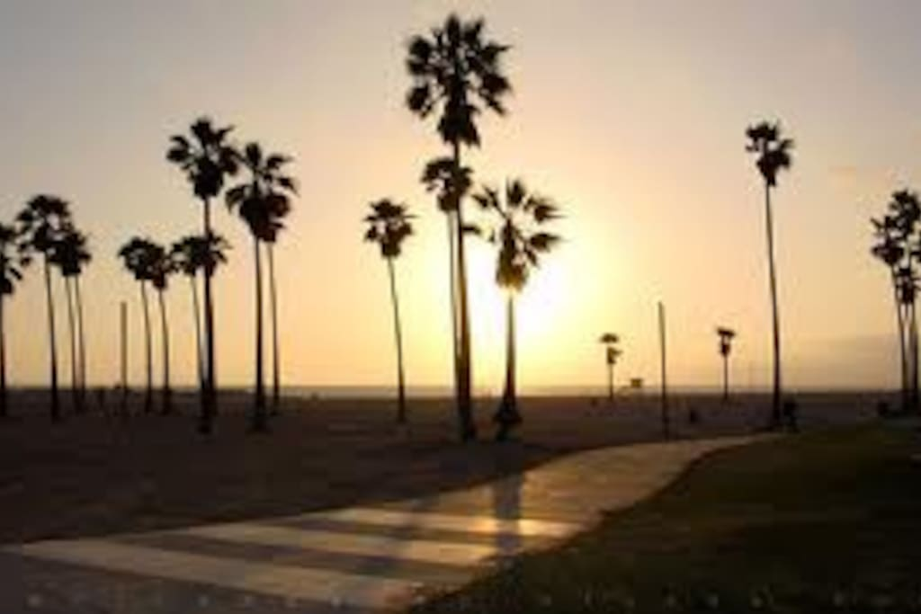Have a walk, bike ride, RollerBlade on the 26 mile long beach bike path.  Venice: 3 min. Downtown SM: 3 min