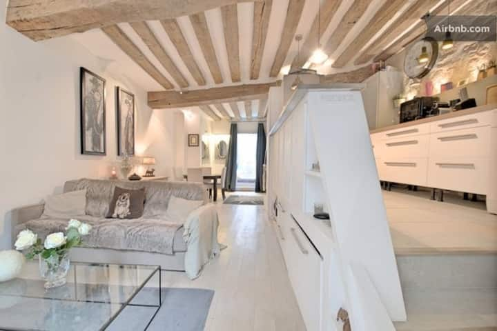 Splendid atypical loft st germain