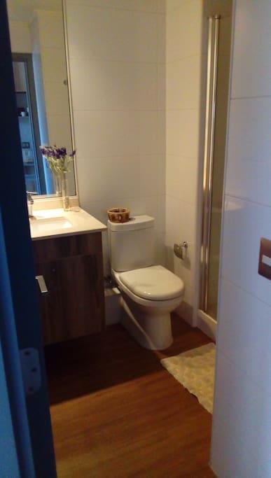 ducha con shower door