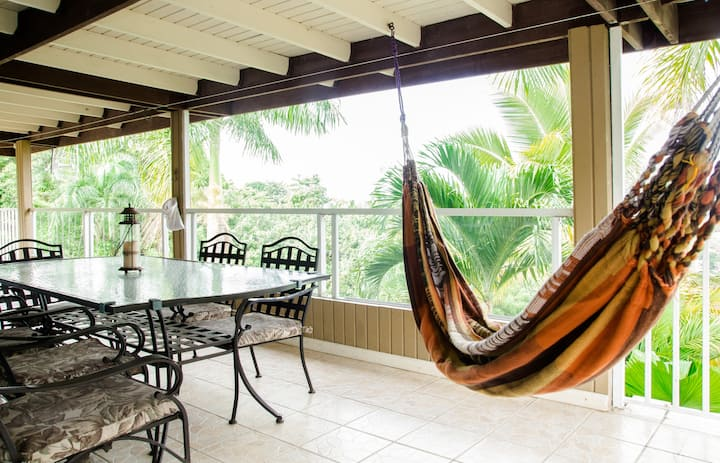El Yunque Chalet, PRIVATE POOL Rainforest home!
