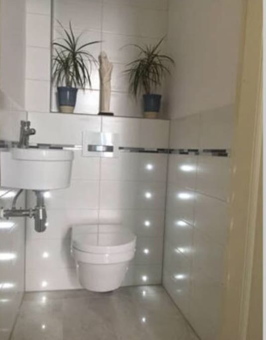 Clean & new toilet