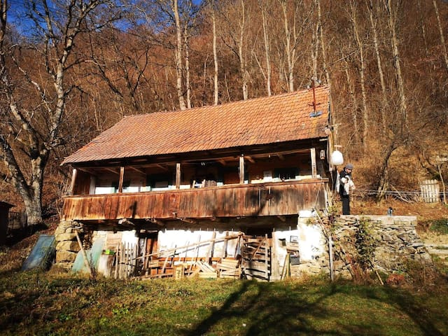 Peaceful countryside house in Transylvania